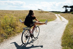 Electric bike excursion in Camargue