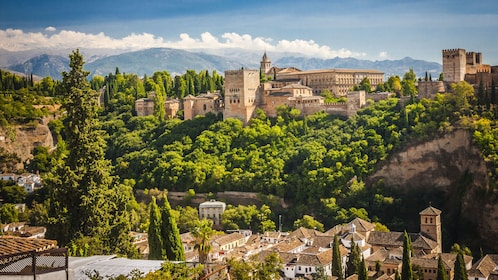 Alhambra Fortress and surrounding trees in Granada