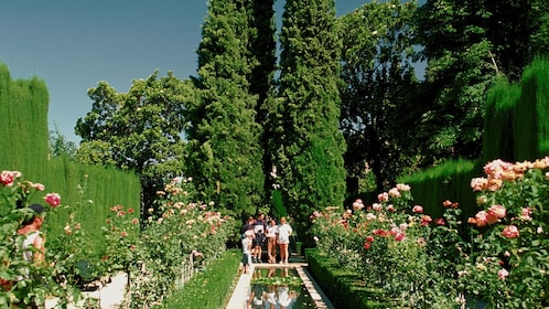 Family standing in the lush Generalife Gardens in Granada