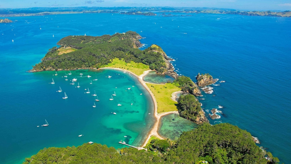 aerial view of peninsula in new zealand