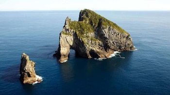 Bay of Islands Cruise Excursion - Hole in Rock Cruise