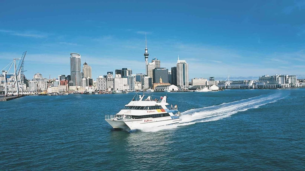 cruise boat with city skyline view in new zealand