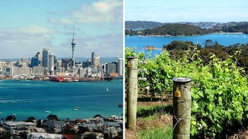 Shore Excursion: City Highlights & Waiheke Island Wine Tour