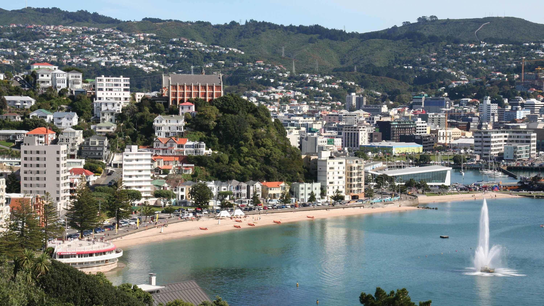 Wellington Cruise Excursion – Half Day City Tour