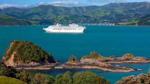 cruise boat on the water in new zealand