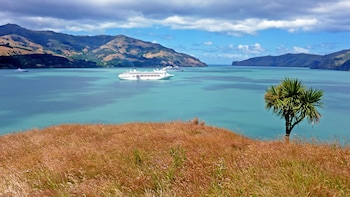 Akaroa Cruise Excursion – Christchurch City & Antarctic Centre