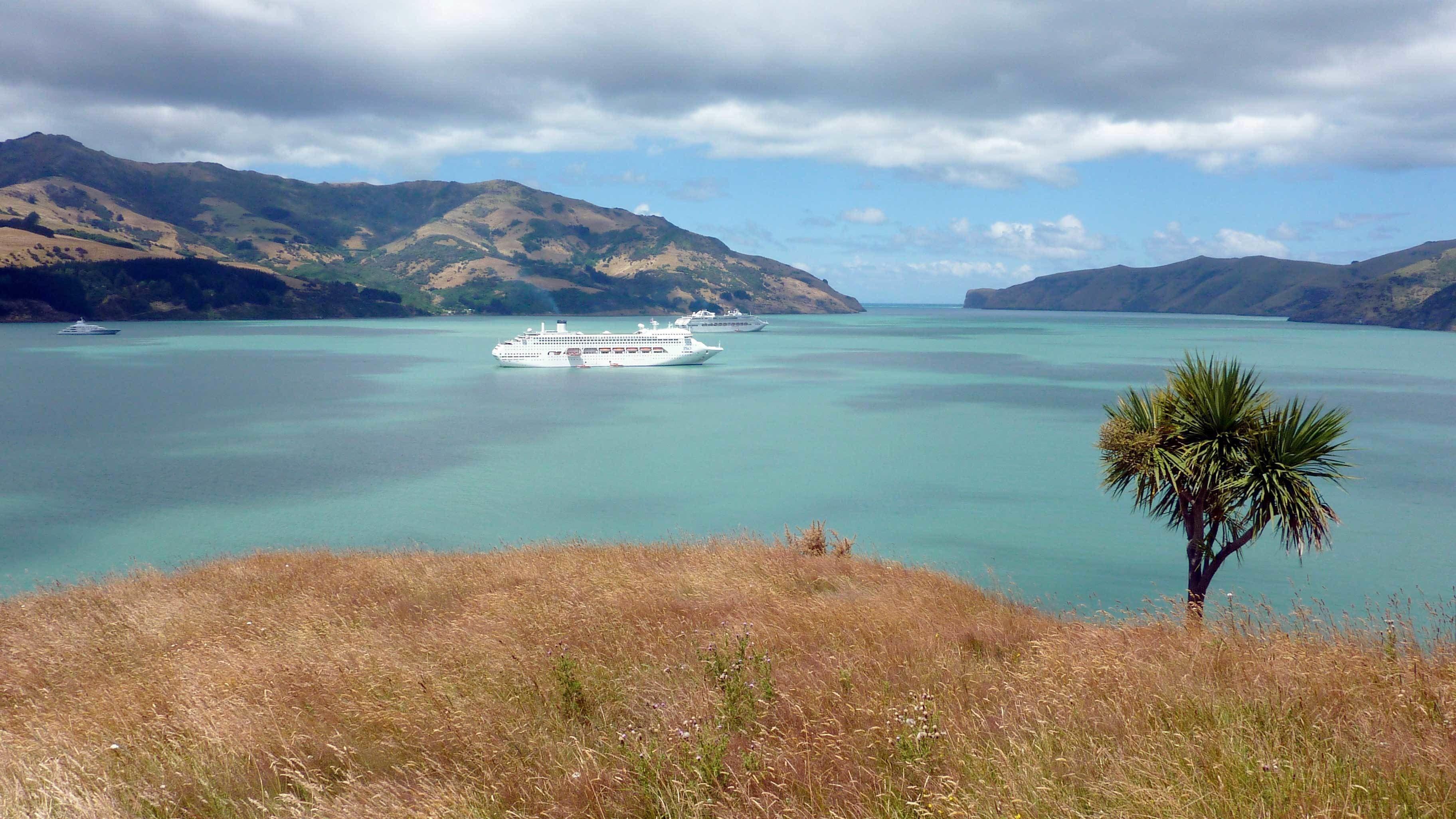 Akaroa Cruise Excursion – Christchurch City Sightseeing & Farm Tour