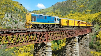 Dunedin Cruise Excursion - Taieri Gorge Railway & Sightseeing Tour