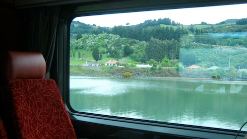 View of New Zealand from inside a train