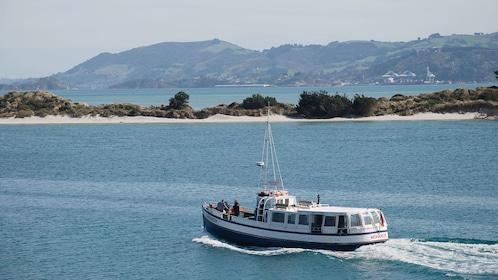 Dunedin Cruise Otago Cruise and Castle in Christchurch