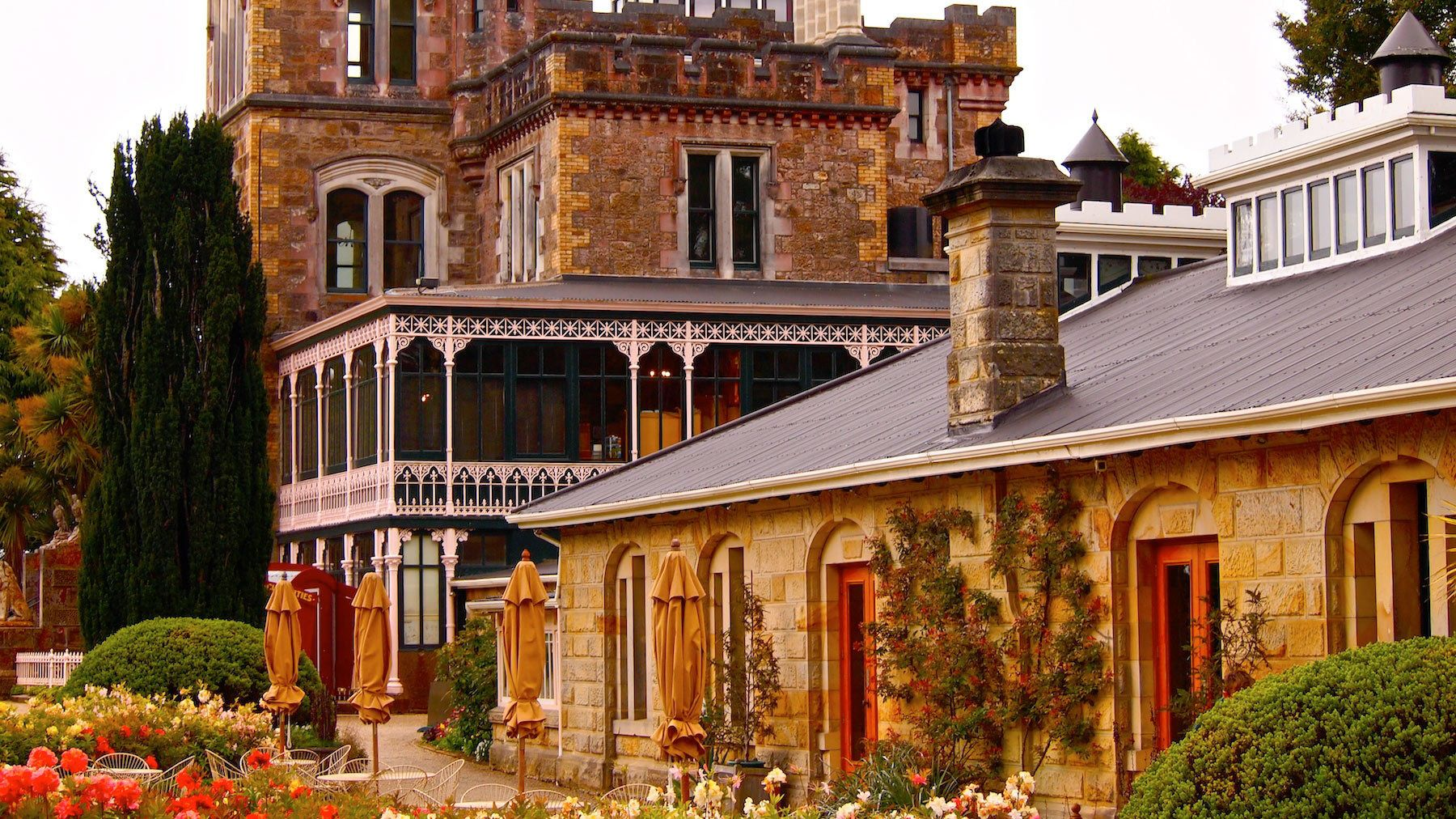 Dunedin Cruise Excursion - Wildlife Cruise & Larnach Castle