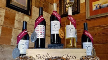 Texas Hill Country & LBJ Ranch Tour with Wine tasting option