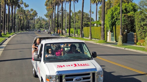 tour van on palm tree lined street in california