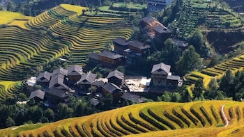 Bus Tour to Longji Rice Terraces at Ping'An Village
