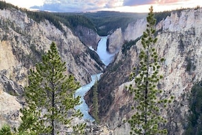 Private Day Tour Jeep Safari of Yellowstone from Gardiner