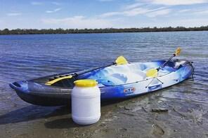 Camargue 4x4 Safari 2h + Picnic + Kayak
