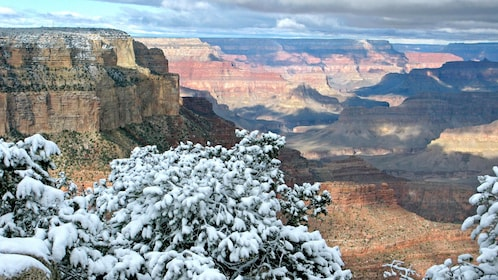 Sedona and Navajo Reservation One-Day Tour in Arizona