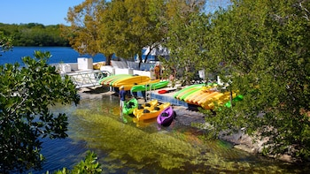 Full-Day Kayak Rental