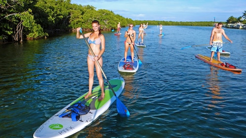 A group paddle boards down a river