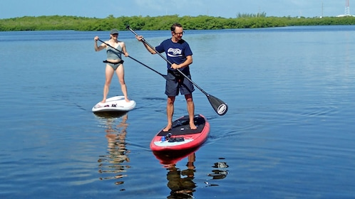 A man and a woman paddle board