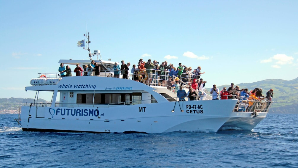 Close up of a boat on the whale watch tour in Regional Portugal Azores Islands