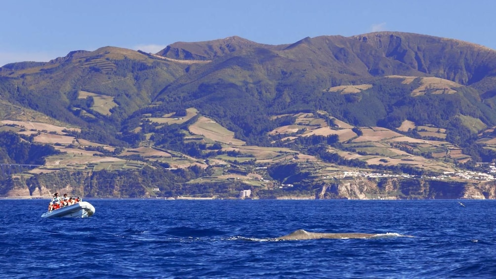 Show item 2 of 5. Panoramic view of Regional Portugal Azores Islands