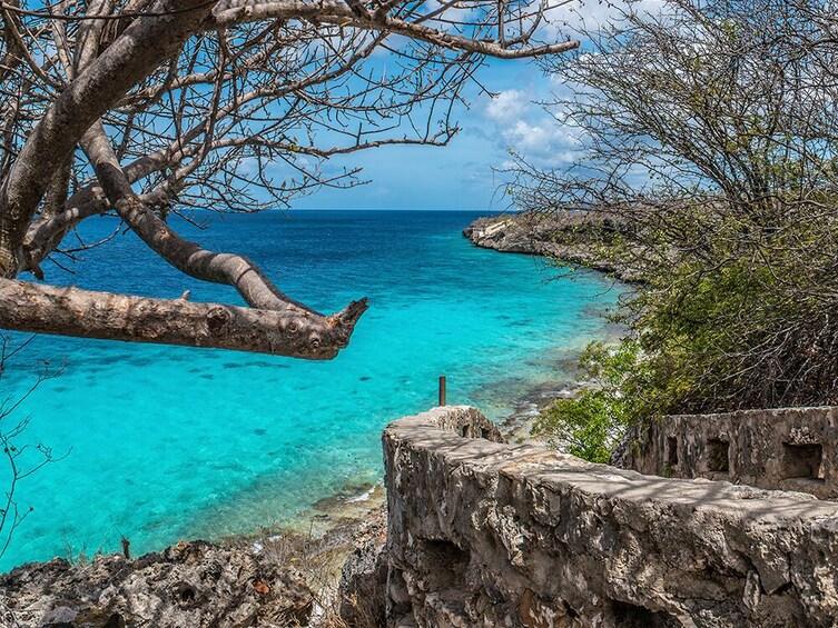 Bonaire Day Tour