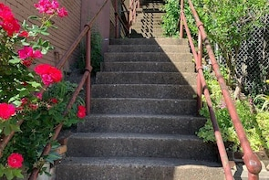 Simply Steps: A City Steps Tour of Troy Hill and Spring Garden