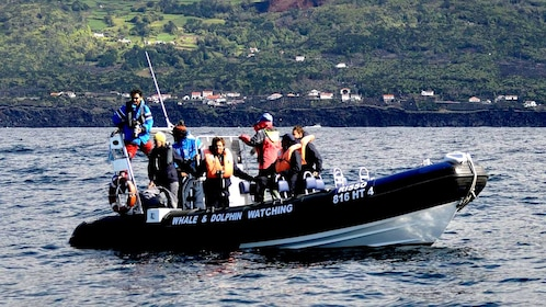 A boat full of whale watchers