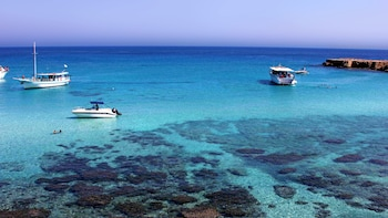 Pafos Zoo & Blue Lagoon Cruise from Paphos and Limassol
