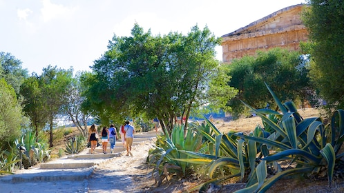 Vegetation lined pathway to Segesta structure