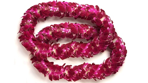 Double pink lei