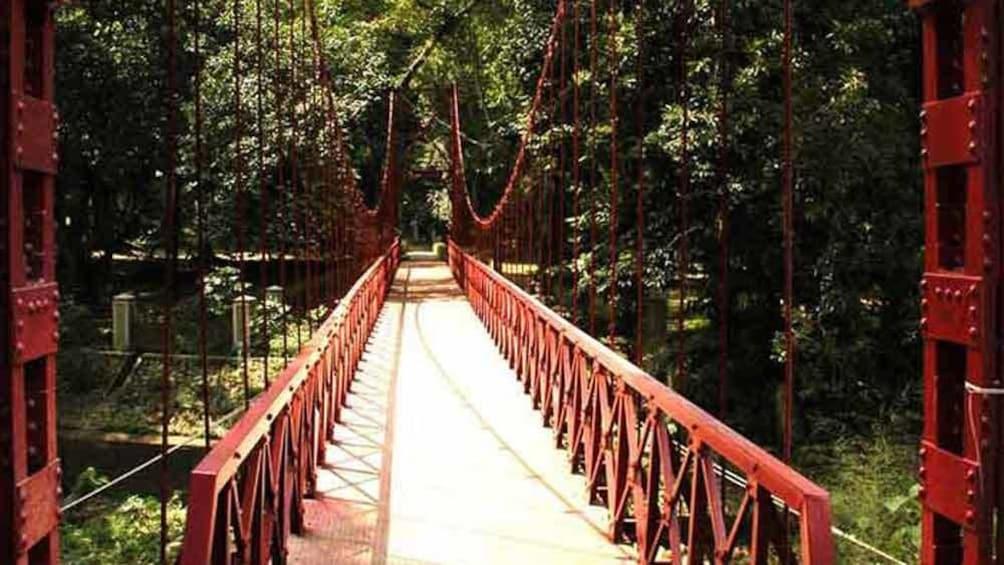 Show item 3 of 10. A bridge in the Bogor Botanical Gardens