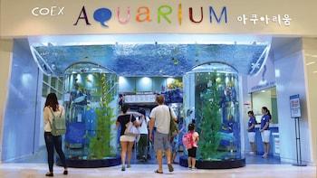Full-Day Gangnam Tour with COEX Aquarium Visit