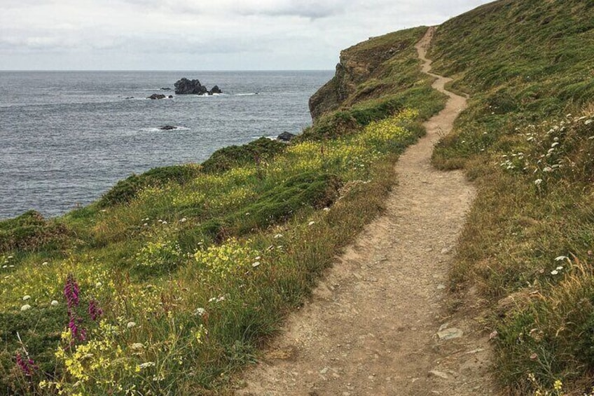 Lizard Point: Develop your landscape photography skills with this audio tour