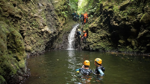 Hikers in swim in a pool while two others climb up waterfall