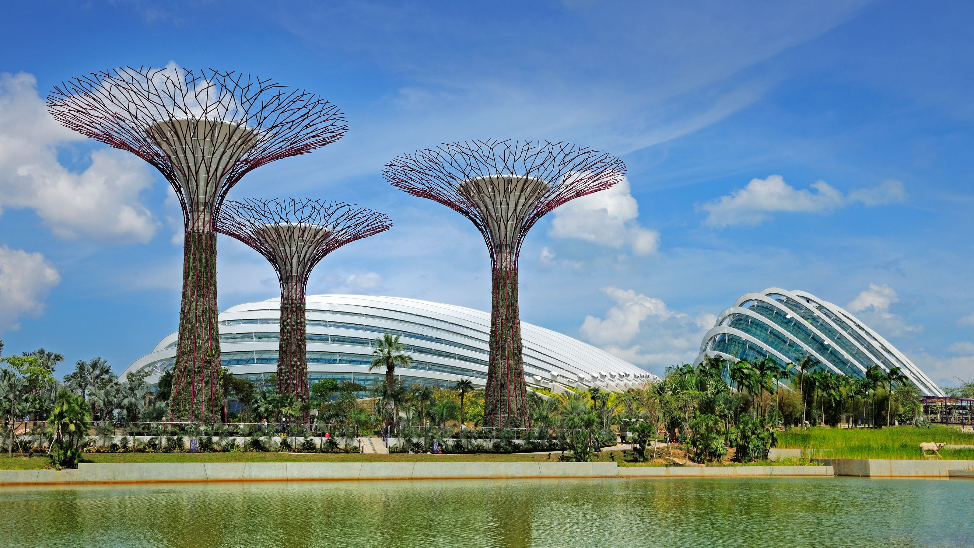 Fast-Track Gardens by the Bay Ticket