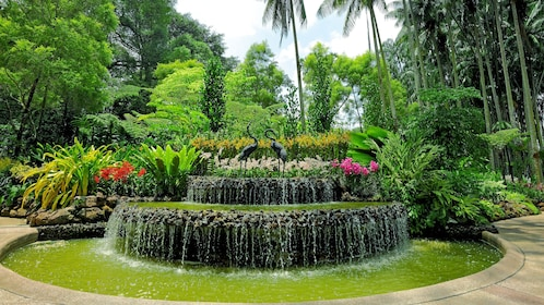 Fountain in Singapore botanical gardens