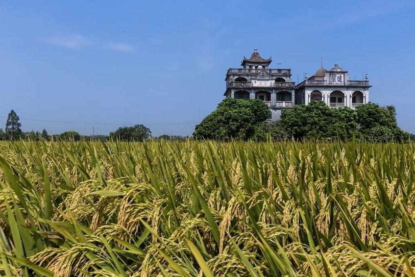 Show item 5 of 5. Kaiping UNESCO Diaolou & Li Garden Tour from Guangzhou