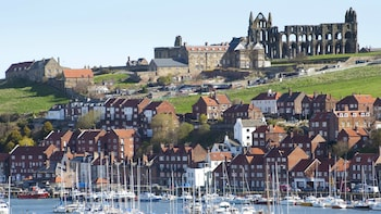 North York Moors & Whitby Day Trip from York