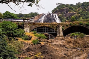 Private Tour to Goa and Dudhsagar Waterfalls with Lunch