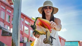 Providenciales Island Half-Day Tour
