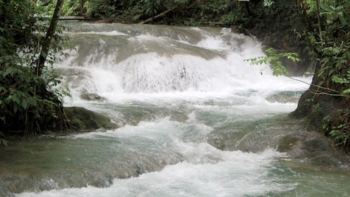 Beautiful river view in South Coast, Jamaica