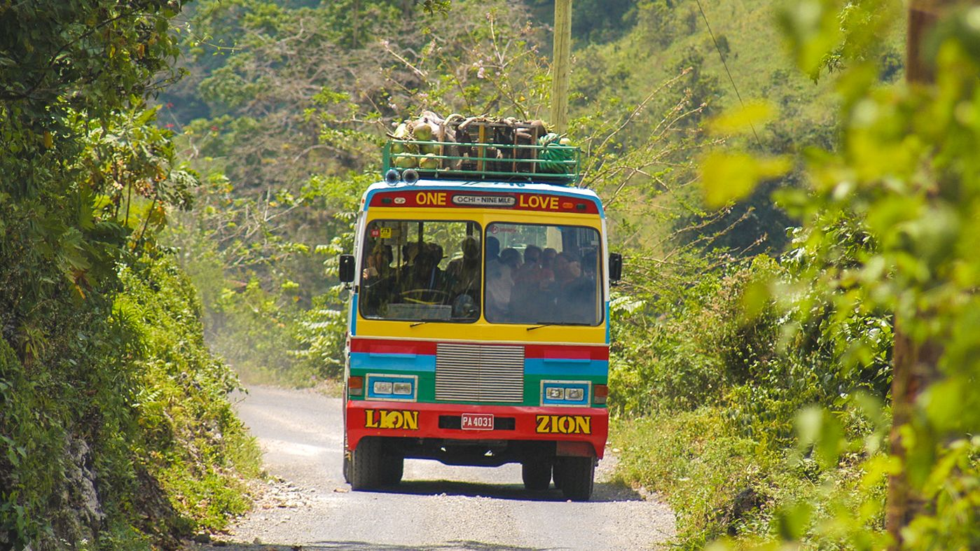 Tour bus filled with tourists riding down narrow street surrounded by forest.