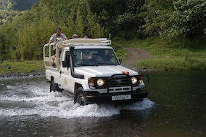 4-Wheel-Drive Mountain Safari Full-Day Tour