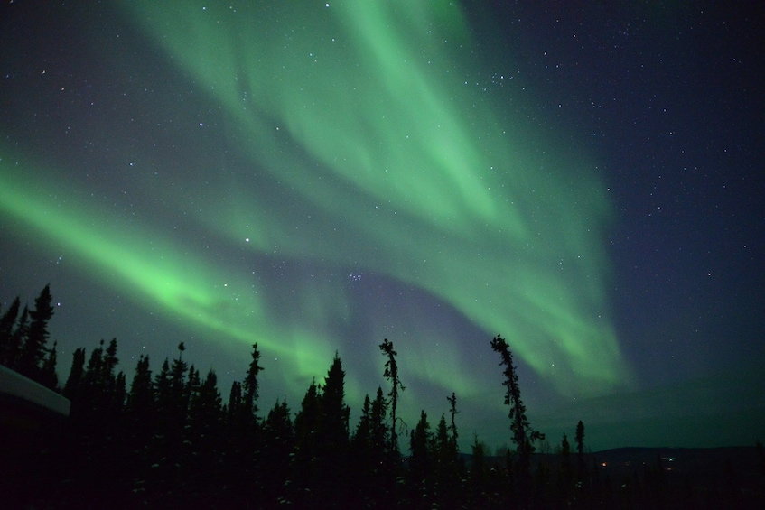 Show item 10 of 10. Northern Lights & Arctic Circle Winter Excursion