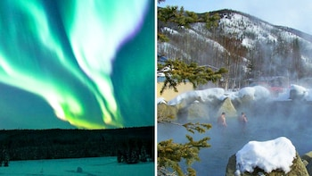 Northern Lights & Chena Hot Springs Winter Tour