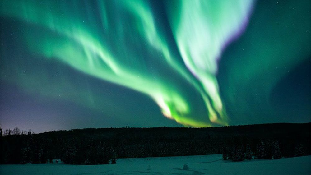 Northern lights glowing over the trees in Fairbanks