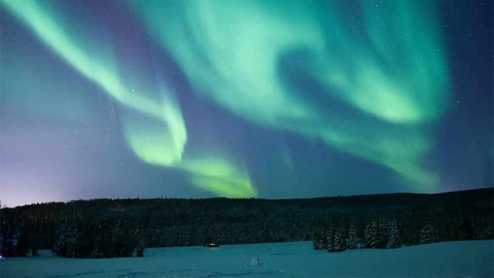 Northern lights in the night sky over Fairbanks