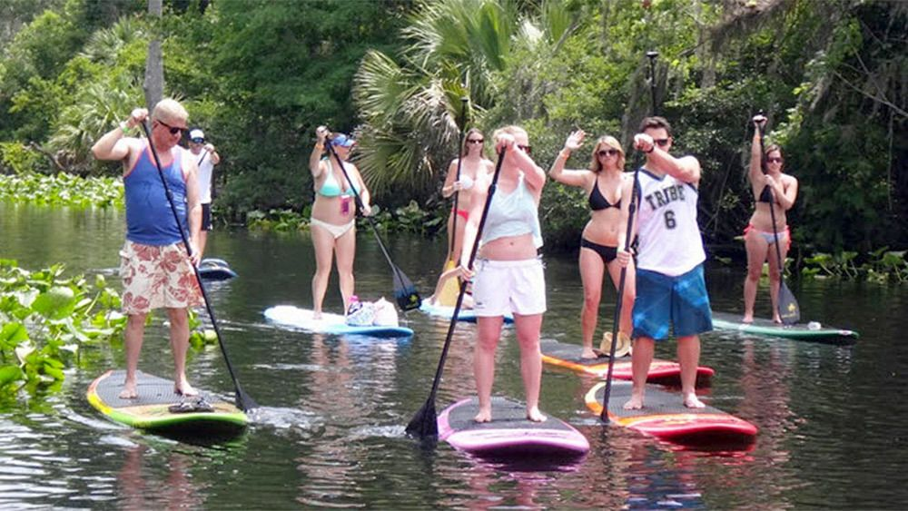 Group enjoying a scenic paddle boarding experience in Orlando